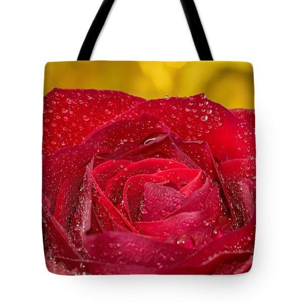 Tote Bag featuring the photograph Rose N Gold by Keith Smith