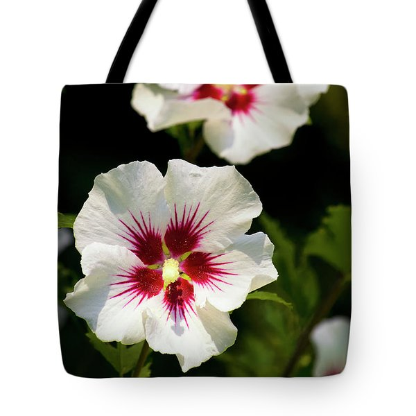 Tote Bag featuring the photograph Rose Of Sharon by Christina Rollo