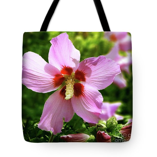 Rose Of Sharon Flowers Tote Bag