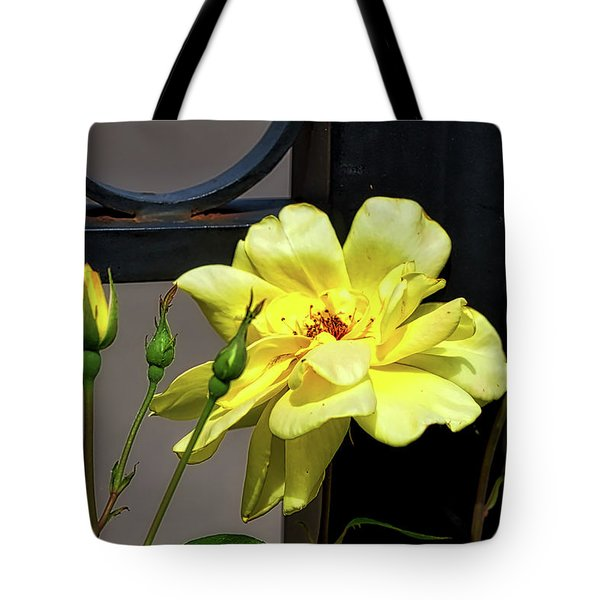 Rose On Wrought Iron Tote Bag