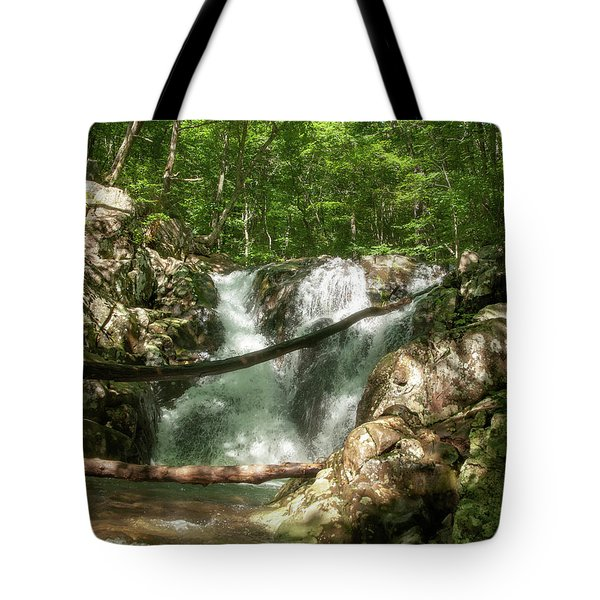 Rose River Falls 2 Tote Bag