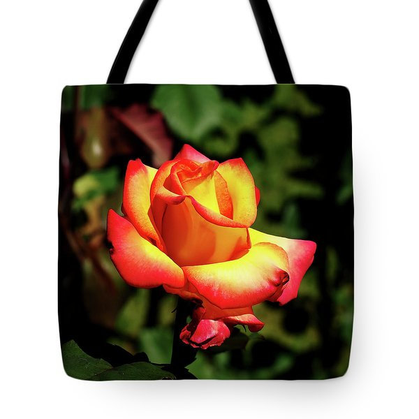 Tote Bag featuring the photograph Rose To Remember by Dale Stillman