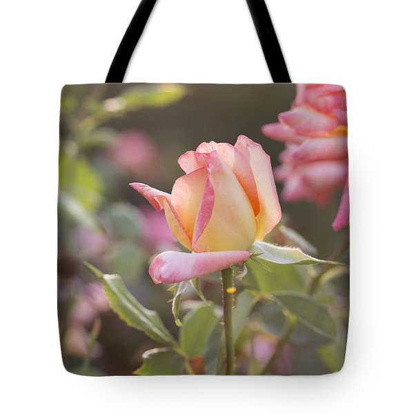 Rose Under Sunset Tote Bag