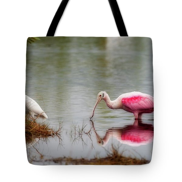 Roseate Spoonbill Eating In Southern Florida Tote Bag