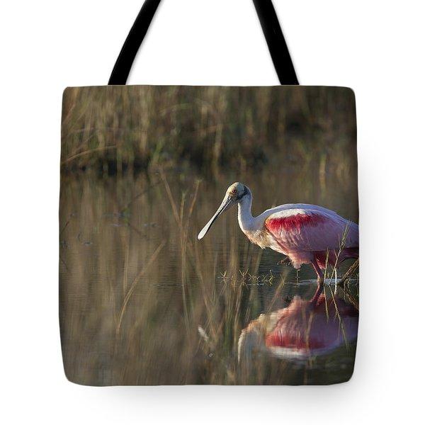 Roseate Spoonbill In Morning Light Tote Bag