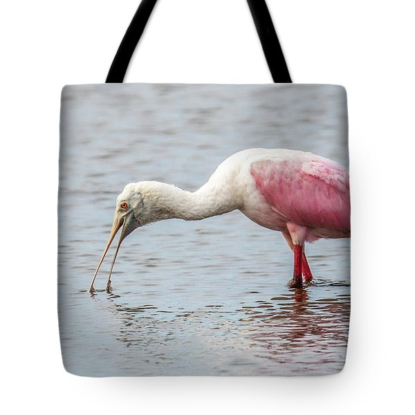 Tote Bag featuring the photograph Roseate Spoonbill by Paul Freidlund
