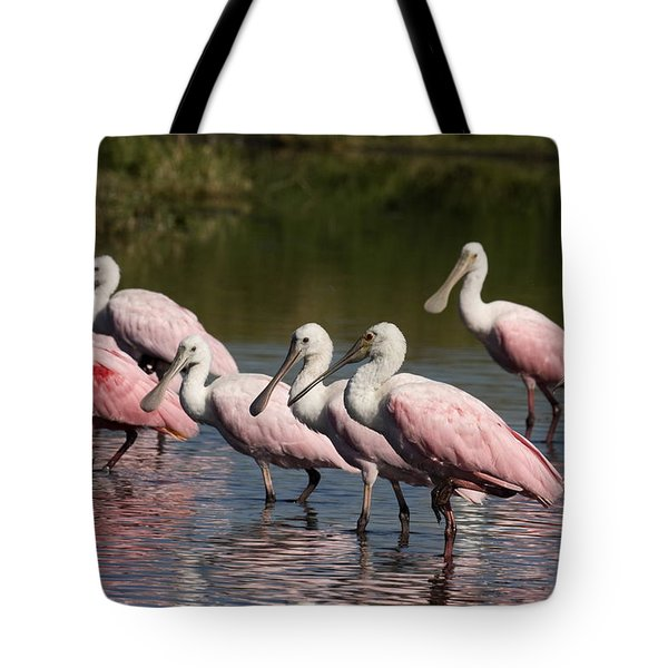 Roseate Spoonbills Tote Bag by Sally Weigand