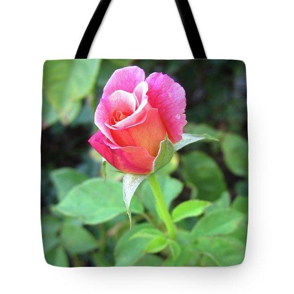 Rosebud Tote Bag by Mary Ellen Frazee