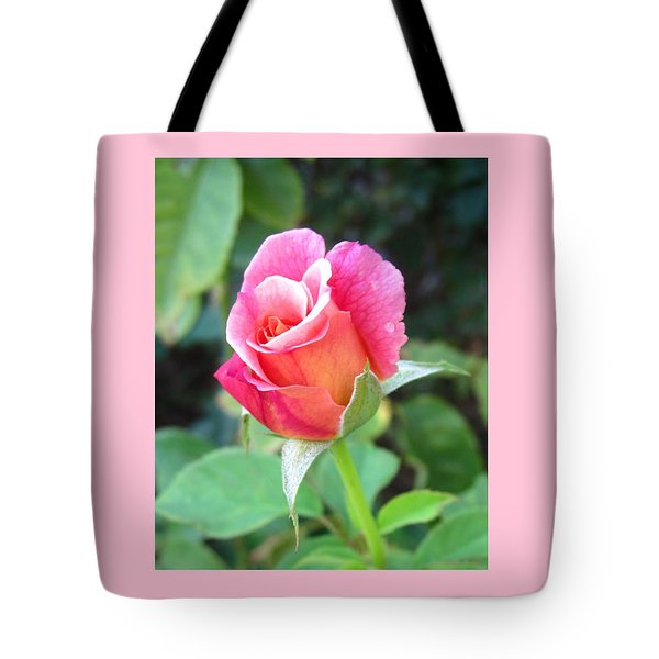 Rosebud With Border Tote Bag by Mary Ellen Frazee