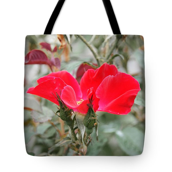 Rosebuds N Red Rose Tote Bag