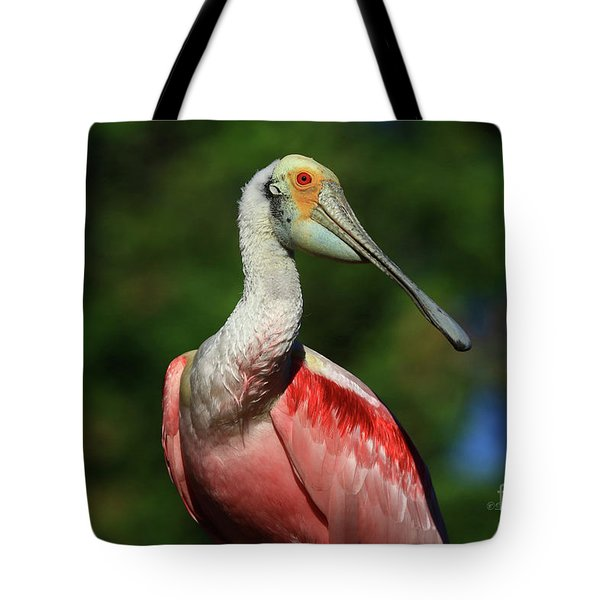 Tote Bag featuring the photograph Rosetta Spoonbill Beauty by Deborah Benoit