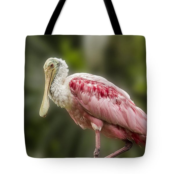 Rosette Spoonbill Tote Bag by Paula Porterfield-Izzo