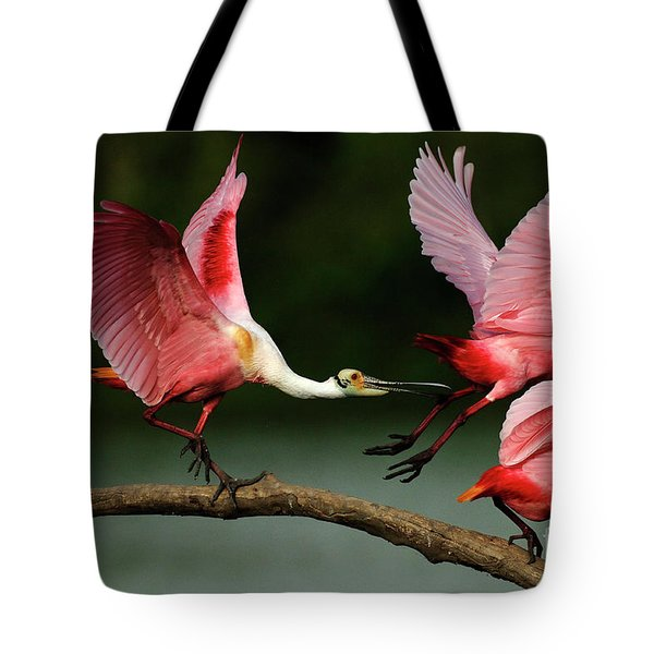 Rosiette Spoonbills Lord Of The Branch Tote Bag by Bob Christopher