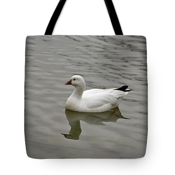 Tote Bag featuring the photograph Ross's Goose by Sandy Keeton