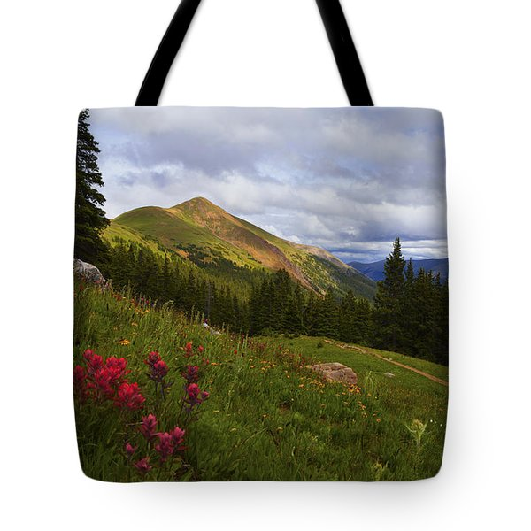 Rosy Paintbrushes Tote Bag
