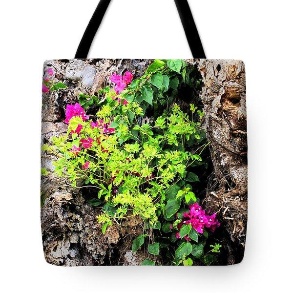 Rough Beauty Tote Bag by Ian  MacDonald