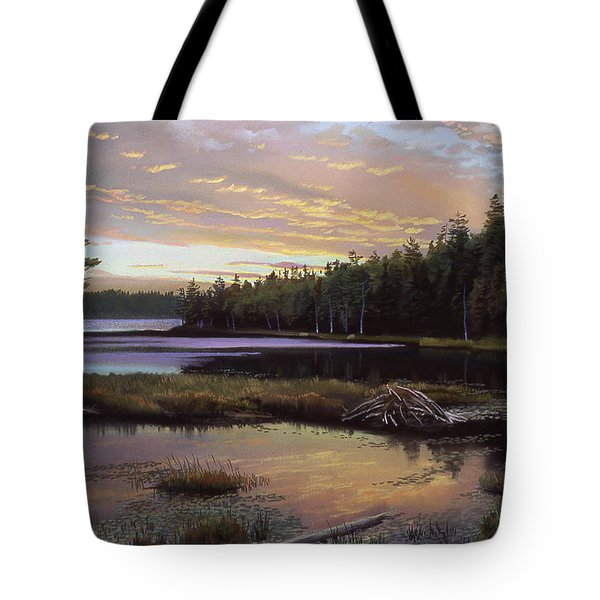 Round Pond Tote Bag by Art Chartow