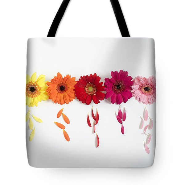 Row Of Gerbera Daisies On White Background Tote Bag