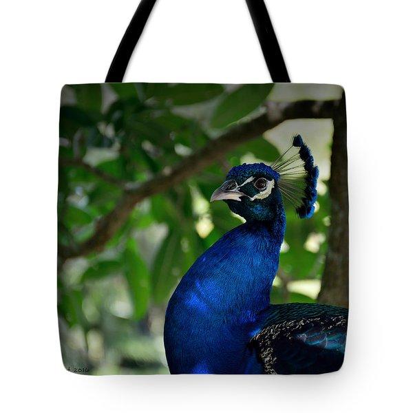 Royal Blue Tote Bag by Edgar Torres