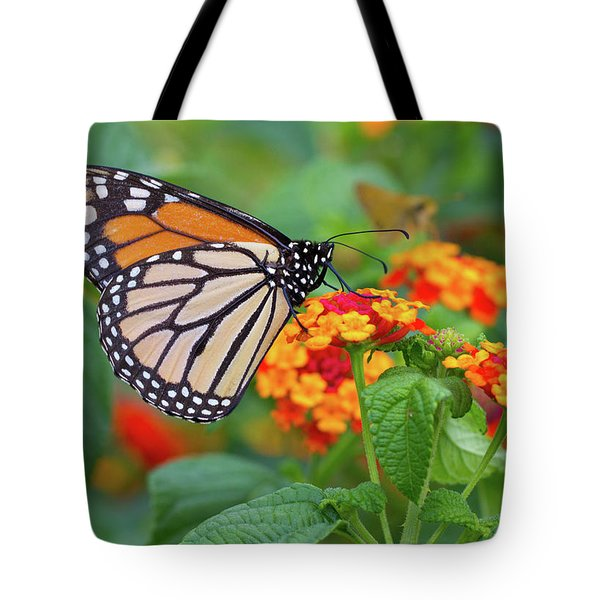 Royal Butterfly Tote Bag