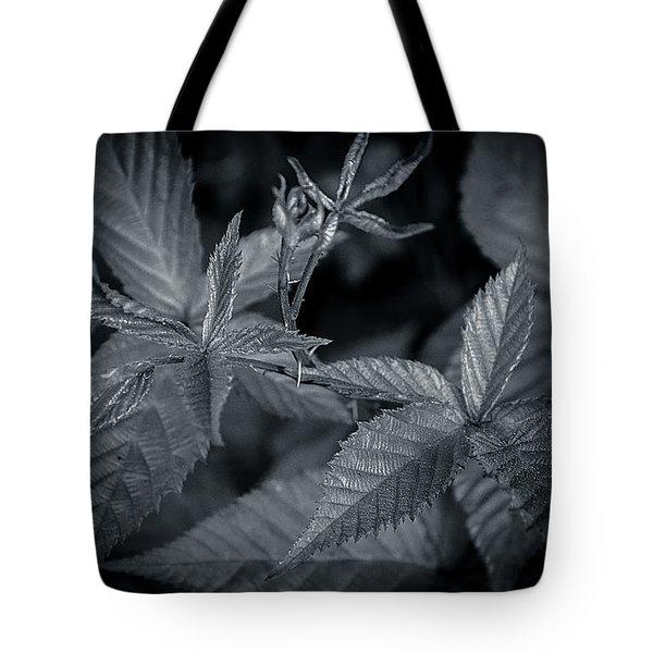 Royal Five Tote Bag