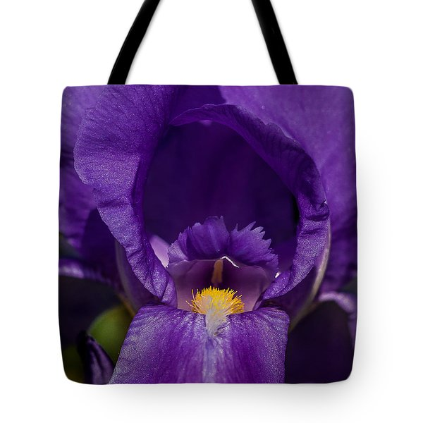 Gold With Royal Purple Robes Tote Bag