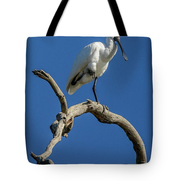 Royal Spoonbill 01 Tote Bag