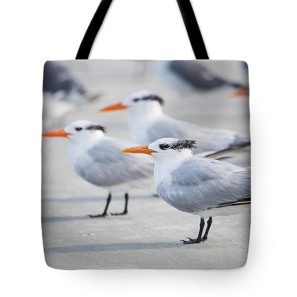 Royal Terns 7056 Tote Bag