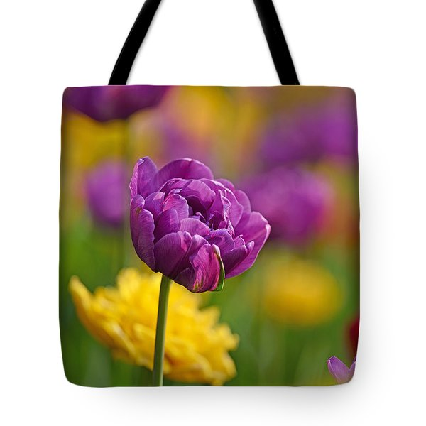 Royal Tulips Tote Bag