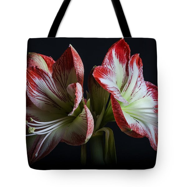 Royaldutch Tote Bag by Doug Norkum