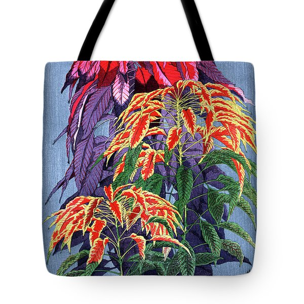 Roys Collection 6 Tote Bag