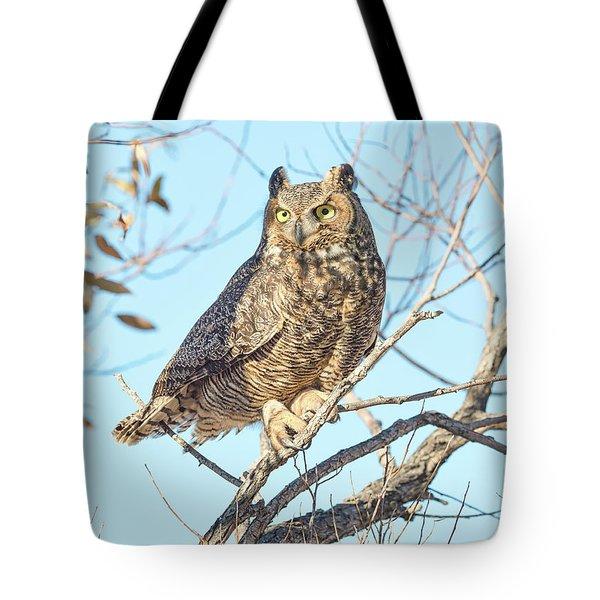 Owlish Tote Bag