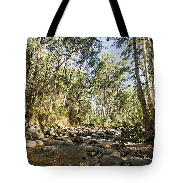 Tote Bag featuring the photograph Rubicon River by Linda Lees
