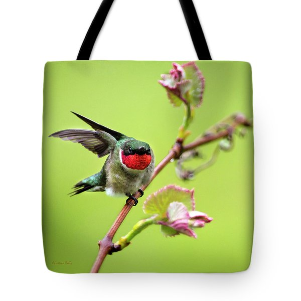 Tote Bag featuring the photograph Ruby Garden Hummingbird by Christina Rollo