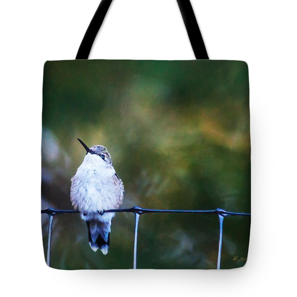 Tote Bag featuring the photograph Ruby-throated Hummingbird  Staying Warm by Edward Peterson