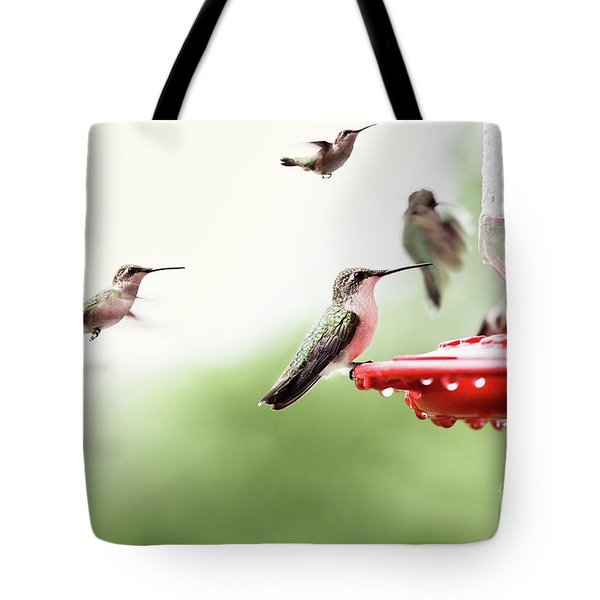 Tote Bag featuring the photograph Ruby-throated Hummingbirds by Stephanie Frey