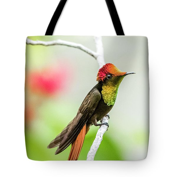 Tote Bag featuring the photograph Ruby's Headdress by Rachel Lee Young