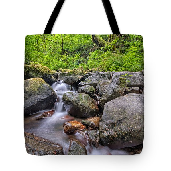 Ruckel Creek Tote Bag by David Gn