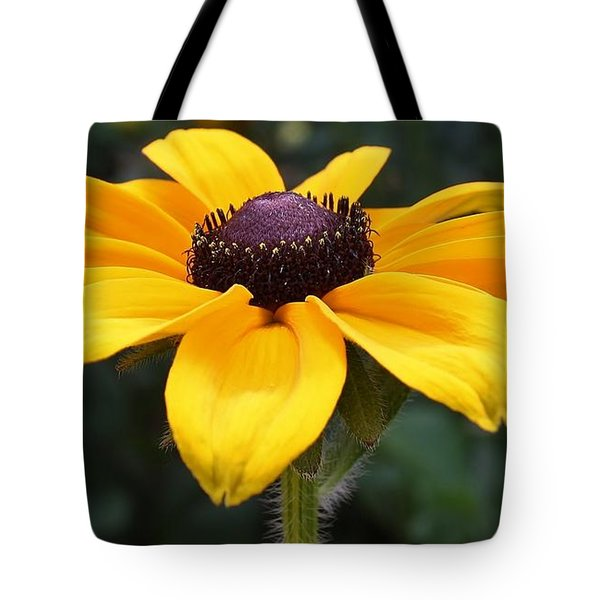 Rudbeckia Bloom Up Close Tote Bag