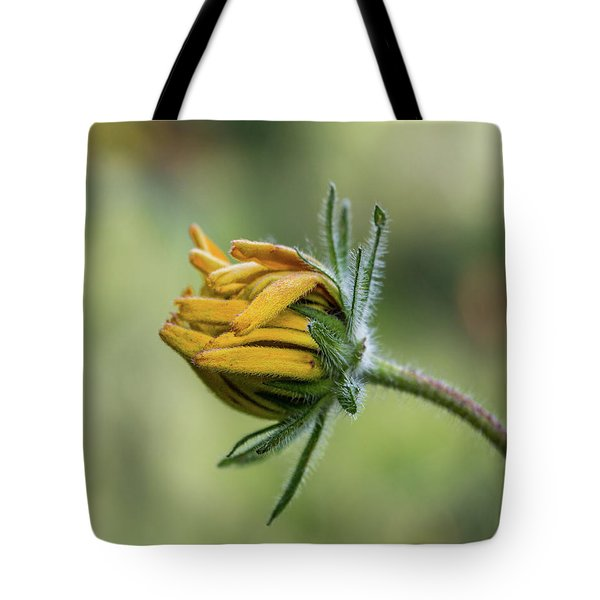 Rudbeckia Fuzzy Bud Tote Bag
