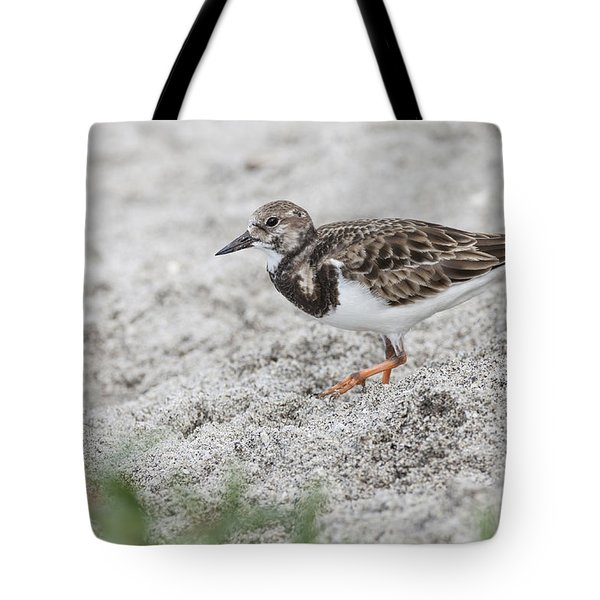 Ruddy Turnstone Foraging On The Beach Tote Bag
