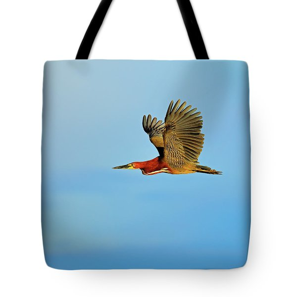 Rufescent Tote Bag by Tony Beck