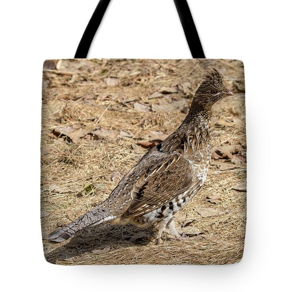 Tote Bag featuring the photograph Ruffed Grouse by Betty Pauwels