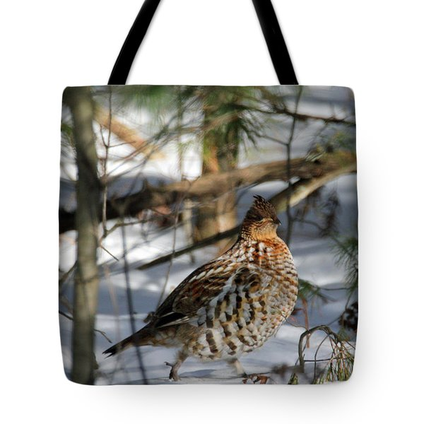 Ruffed Grouse In Winter Tote Bag