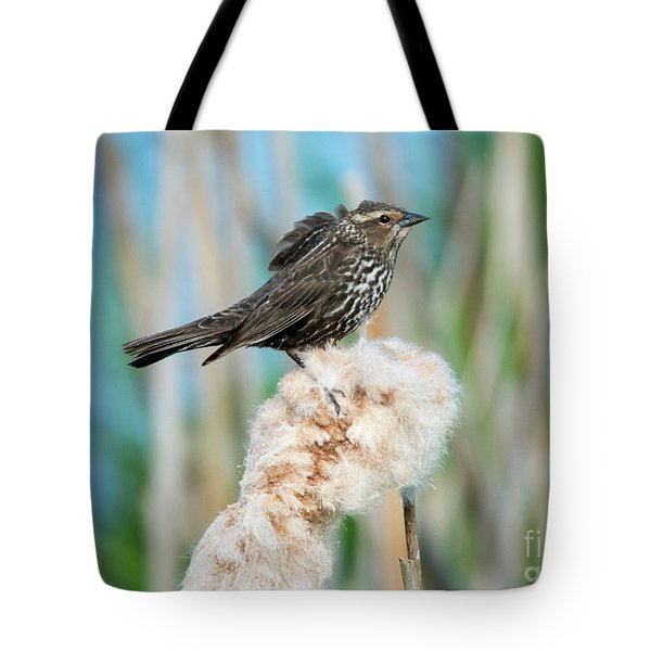 Ruffled Feathers Tote Bag by Mike Dawson