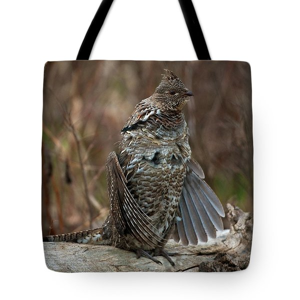 Ruffled Grouse Drumming Tote Bag by Gary Langley