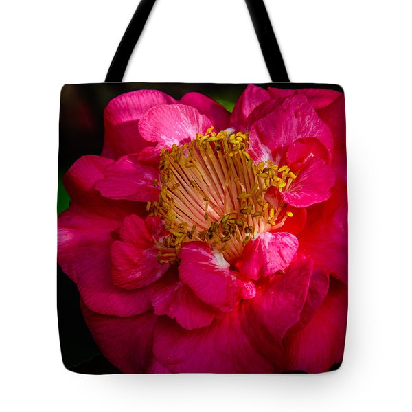 Ruffles Of Pink  Tote Bag by John Harding
