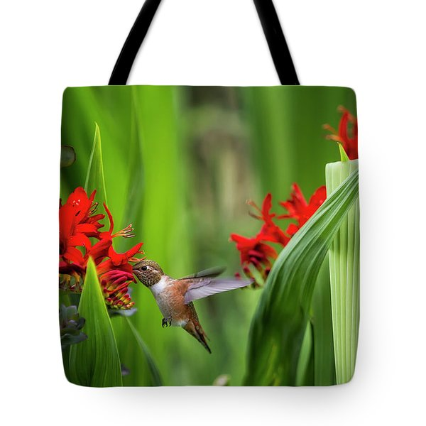 Rufous Hummingbird Feeding, No. 3 Tote Bag