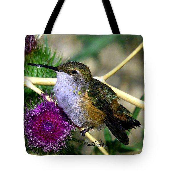 Rufous Hummingbird On Thistle Tote Bag