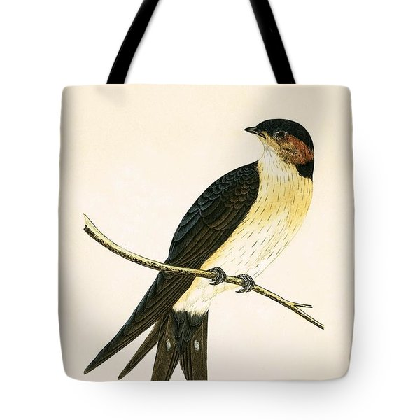 Rufous Swallow Tote Bag by English School